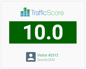 TrafficScore Visitor Number